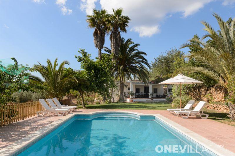 Zwembad met palmbomen op Ibiza