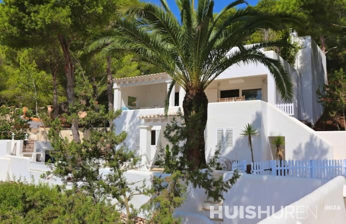 Witte villa met palmboom