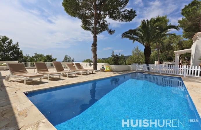 Zwembad met ligbedden en palmboom
